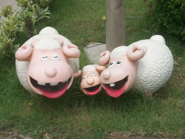 Thaïlande : La ferme aux moutons