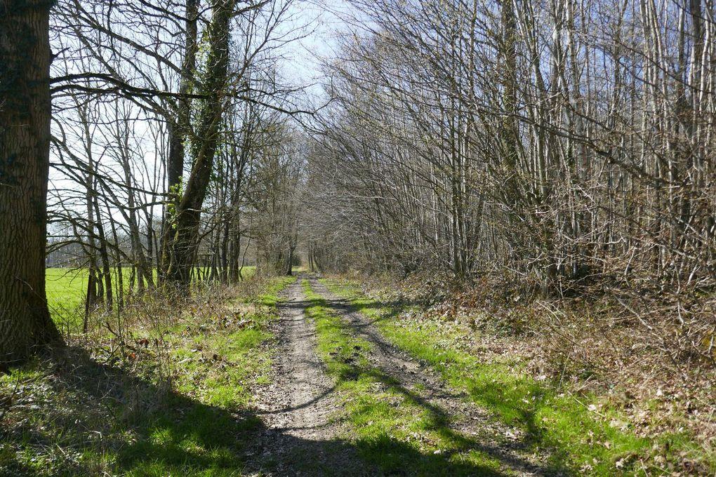Mercredi rendez-vous avec le printemps à la Neuville aux Larris