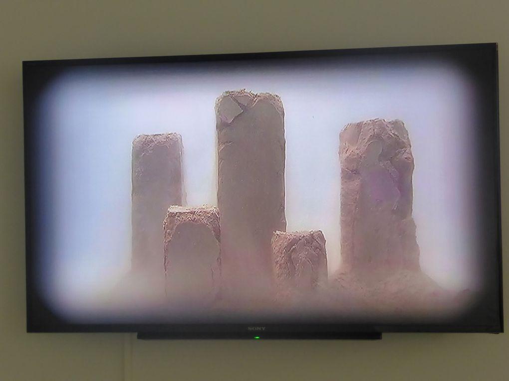 Valère Coste, Karstic story, 2007, installation // The Build, 2012, vidéo HD, 23 minutes © Le curieux des arts Gilles Kraemer, octobre 2014, visite presse de la Fondation François Schneider, Wattwiller