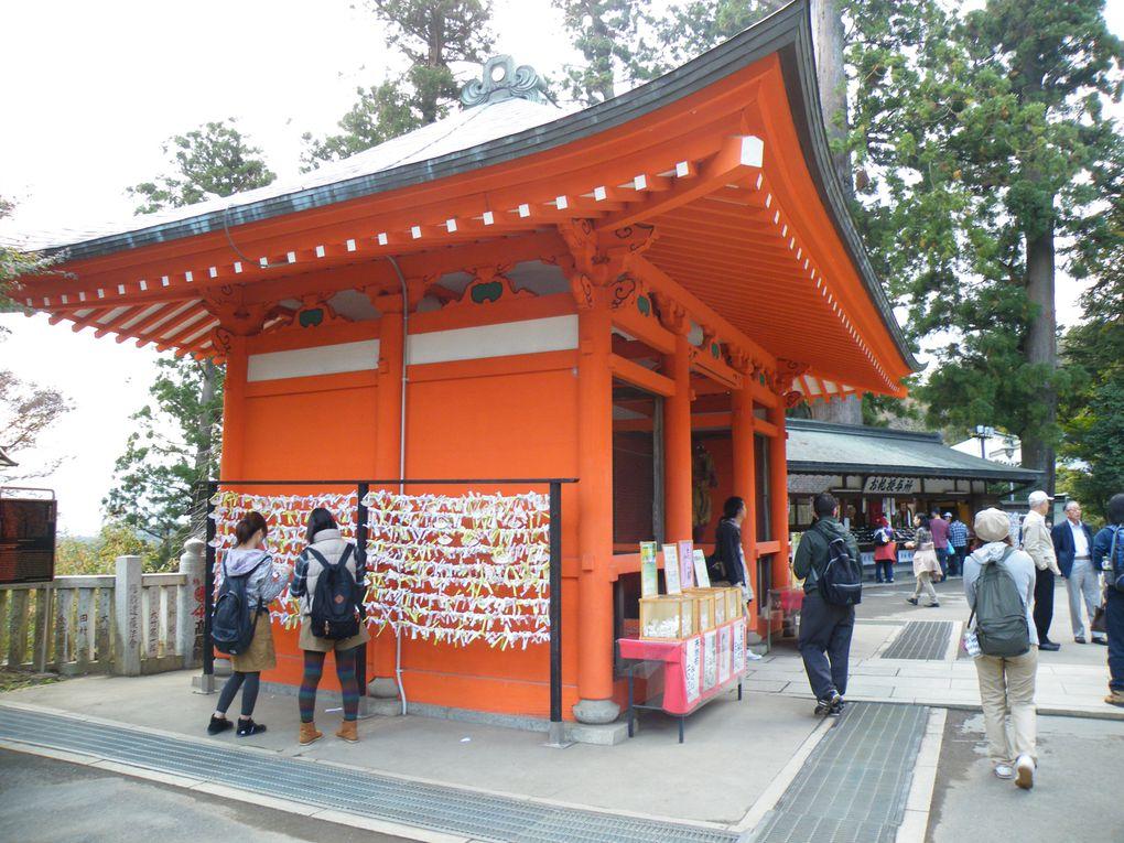 Le Japon est le pays du modernisme et des traditions mais le visiter en avril et admirer les cerisiers en fleurs, c'est encore mieux!!!