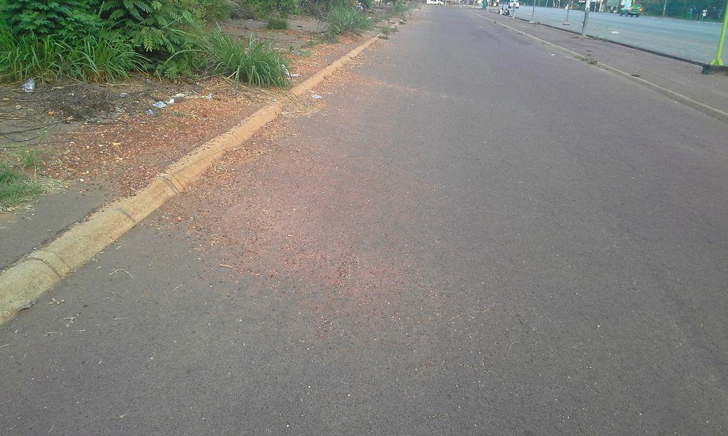 Vente terrain constructible à Yamoussoukro