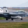 "McDonnell Douglas F/A-18 ""Hornet"" - VMFA(AW) 533 ""Hawks"" - Command of the Squadron (CO) 2020"