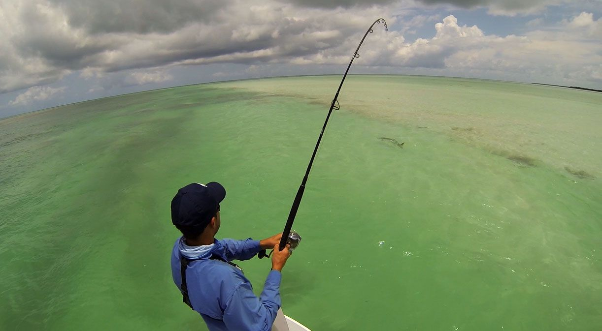 Zenaq roof expedition 83(shimano stella 10000SW) way of fishing