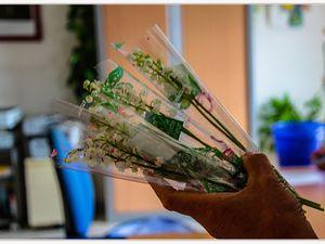 Le bouquet de muguet pour les plus de 80 ans ( La Mure Argens)