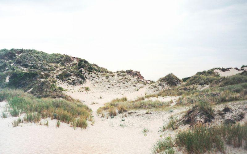 J'avais un royaume de sable