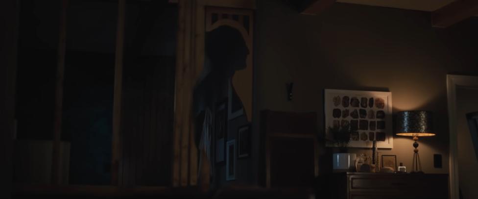 La proie d'une ombre - de David Bruckner