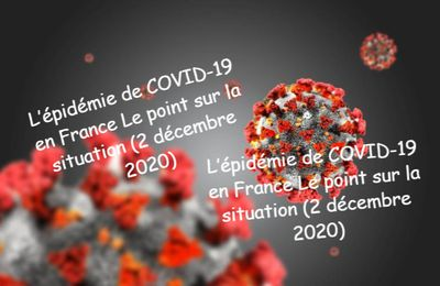 L'épidémie de COVID-19 en France Le point sur la situation (2 décembre 2020)