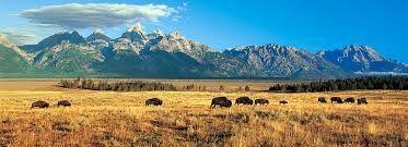 Tourisme  au Wyoming