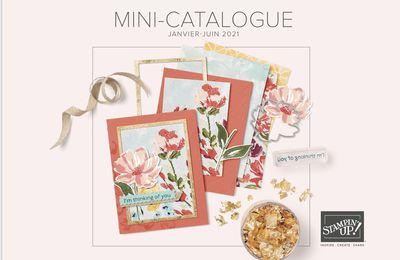 Le mini catalogue janvier-juin est arrivée avec Sale-A-Bration