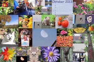 Bilderrückblick Oktober