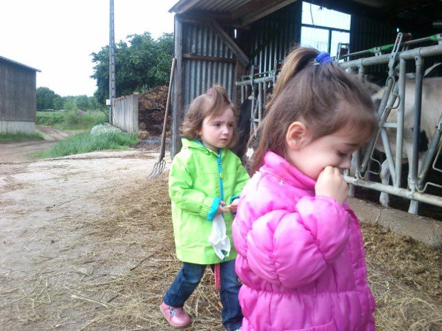Album - journee-ferme-PS1