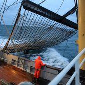 Le Parlement européen décide d'interdire la pêche électrique