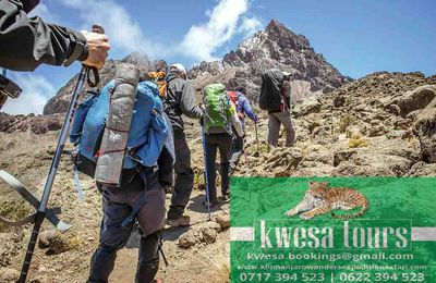 Do The Best You Can With Kilimanjaro Climb For Charity