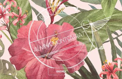 Alvina Montsarrat, artisan et créatrice en bijouterie joaillerie, des bijoux poétiques et originaux, Perpignan