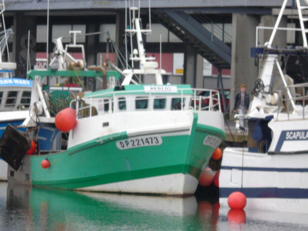 BERLIO  DP221473 , dans le port de Boulogne sur Mer le 06 juin 2019