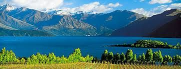 Viticulture in New Zealand