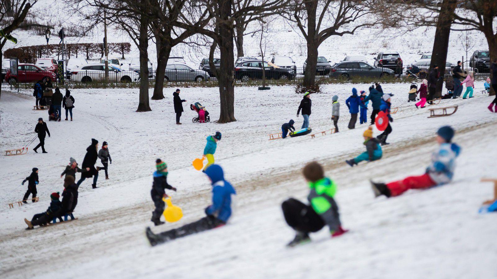 Nombreux enfants et familles font de la luge au Volkspark Friedrichshain (Crédit photo : picture alliance/dpa)