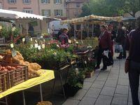 Le marché bio de Saint Genis Laval