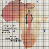 Grille gratuite point de croix : Afrique - Africaine - 1 - Le blog de Isabelle