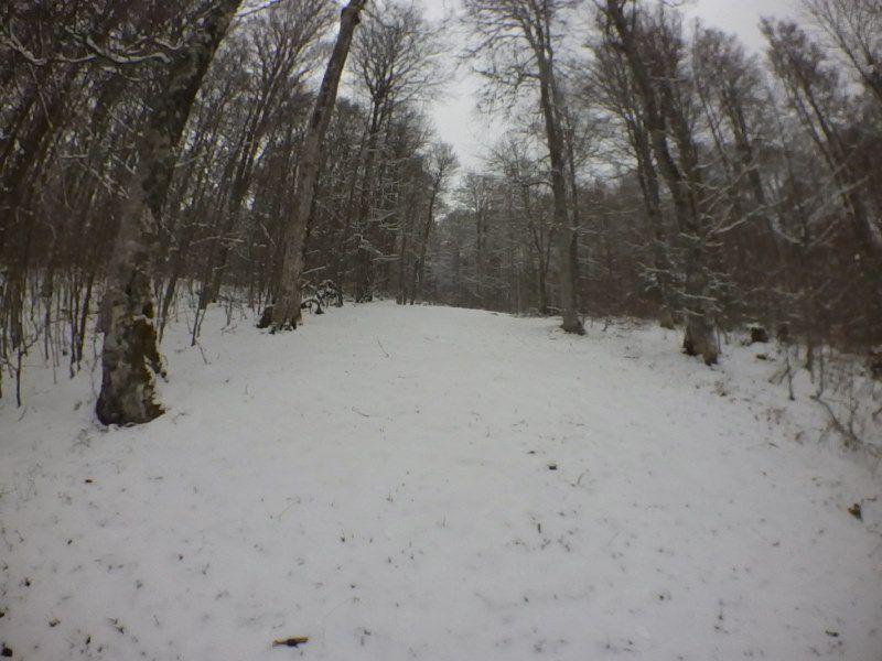 2021: upHILL et downHILL dans la neige