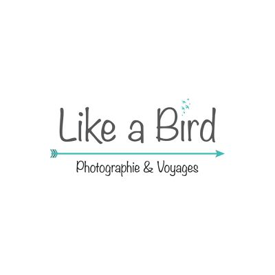 Like a Bird - Photography