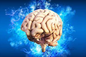 L'intelligence humaine divisée par deux d'ici 2100 ?