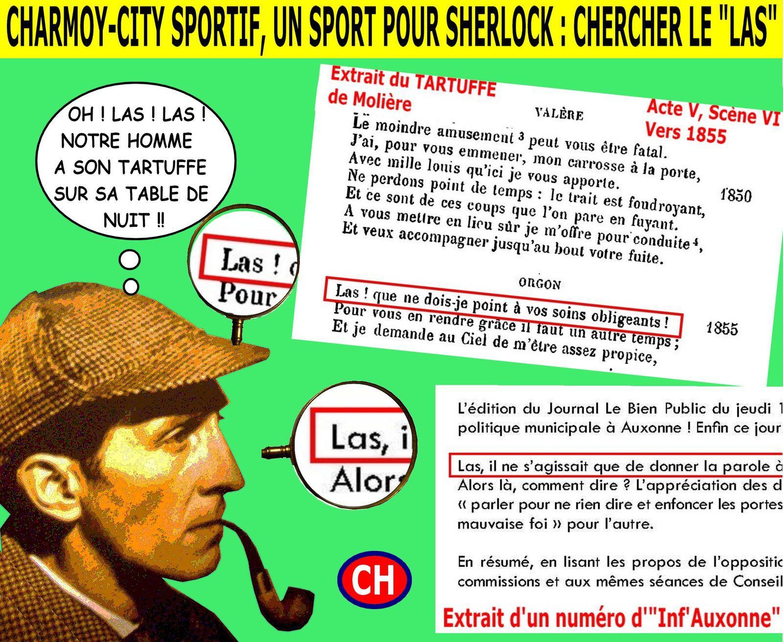 Charmoy-City sportif, un sport pour Sherlock, chercher le las.jpg