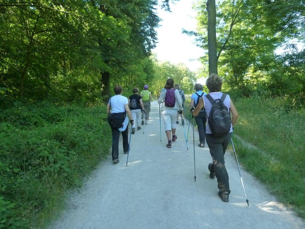 Marche Nordique au Bois de Vincennes - 7,5 km.