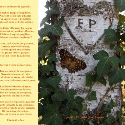 Il fait un temps de papillons / Hace un tiempo de mariposas, Elizabeth Robin, À l'étoile de nos pas, 2021