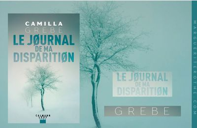 Le journal de ma disparition, un polar de Camilla Grebe