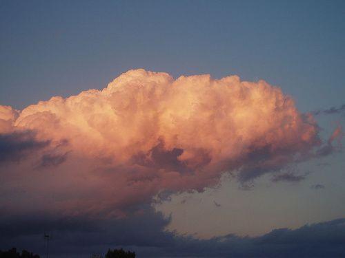 Album - nuages roses