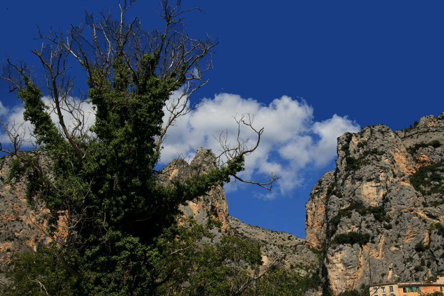 Album - Images de Provence
