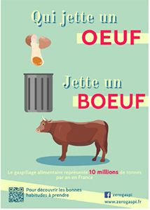 gaspillage alimentaire bernieshoot