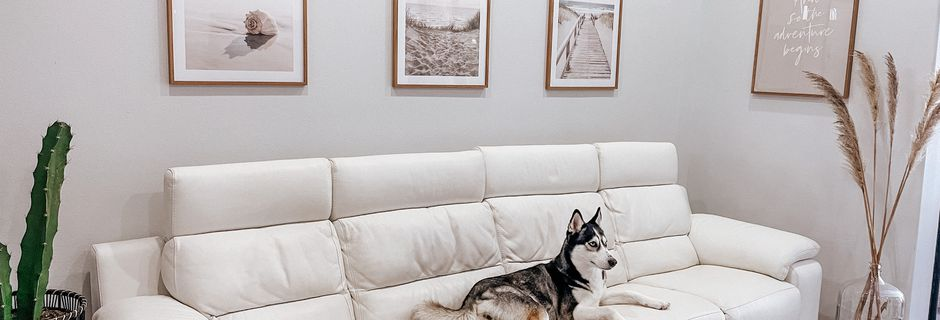 Poster Store Review: Elegant Posters to decorate your home and  accessorize your life.