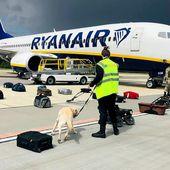 Les dessous de l'infox, la chronique - Retour sur la campagne de désinformation autour du détournement de l'avion de Ryanair à Minsk