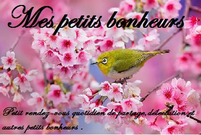 Petits bonheurs 2015 # 1