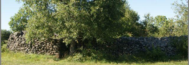 Chadécol un site qui a plus de 3500 ans