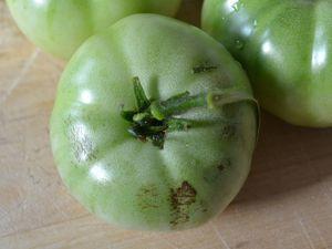 Confiture de tomates vertes et citron
