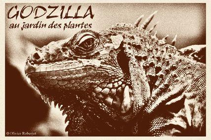 Godzilla squatte la ménagerie...