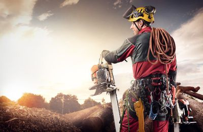 7 Safety And Security Advantages Of Chain Saws