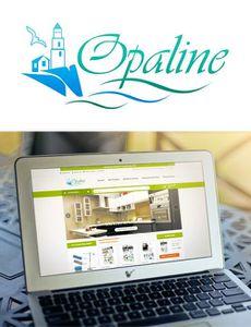 Concours avec Opaline des produits qui facilitent  la vie rares et exceptionnels  .