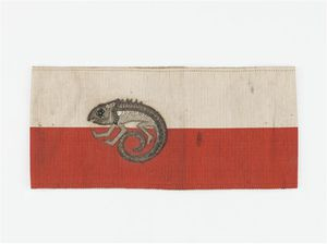 Un caméléon, symbole de la Section de camouflage, est brodé en cannetille d'argent sur les couleurs de l'état-major, rouge et blanc.