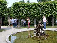Aufnahmen in der Laubenregion, u.a. auch vom Lindensaal,  zuletzt von der Mitte der 90er Jahre komplett neu gepflanzten Fichtenallee.