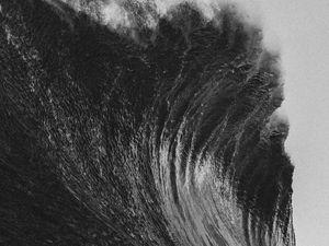 the dedicated nothing, 4 musiciens de biarritz qui baignent dans une scène surf en pleine ébullition esthétique et artistique
