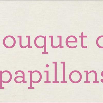 Pleins feux sur  BOUQUET DE PAPILLONS / BUTTERFLY BRILLIANCE Stampin'Up!