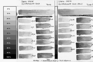 Daniel Smith Quinacridone Gold Old / New Mixing Chart Comparison B&W Value study