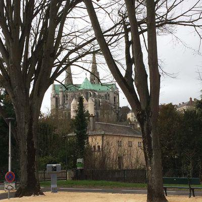 Du vaccinodrome à la cathédrale