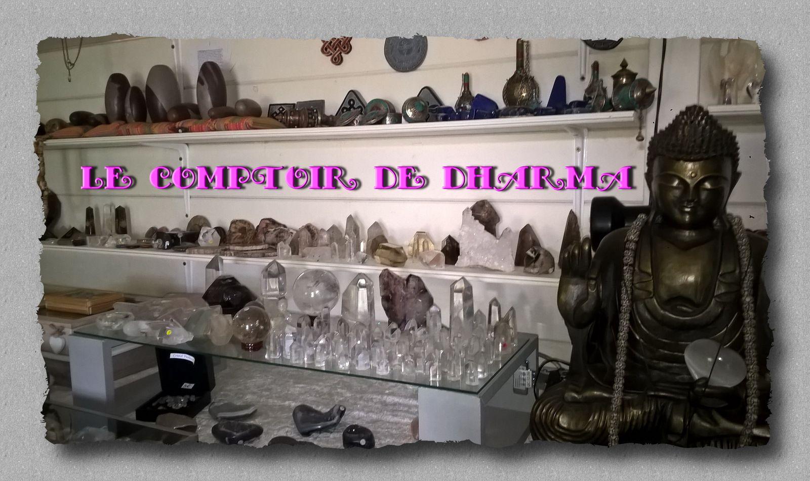 découvrez la boutique du Comptoir de Dharma à Narbonne