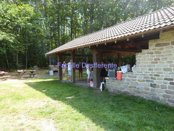 Sortie pique nique entre amis dans les Vosges
