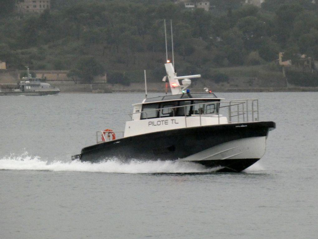 MAGAUD , pilotine du port de Toulon  , en petite rade de Toulon le 21 octobbre 2019